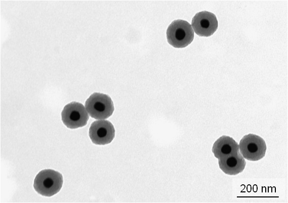 Thermally stable Metal-silica Nanoparticles Synthesized