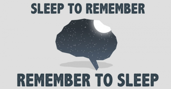 ▲Catchy phrase on the importance of sleep